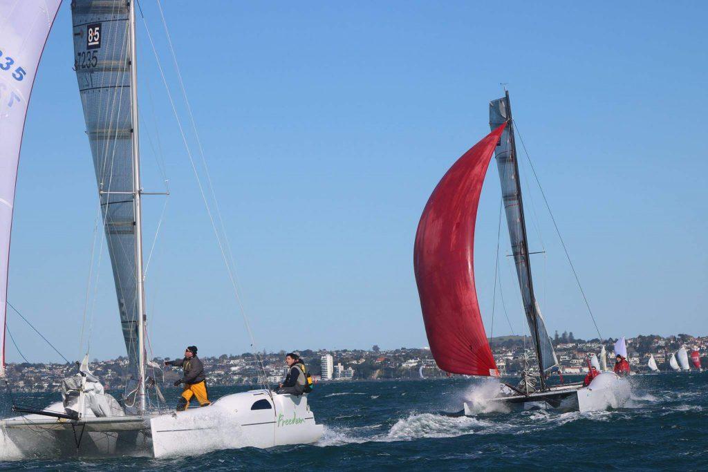 8.5 catamarans racing in Auckland