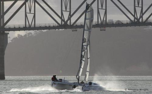 Dirty Deeds sailing towards the Harbour Bridge