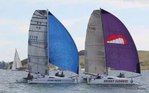 close catamaran racing