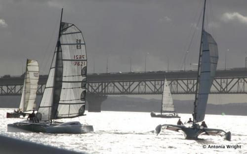 multihull sailing