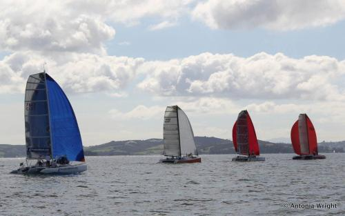 multihull fleet racing