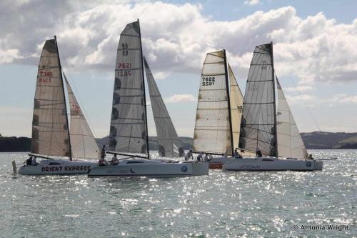 multihull fleet starting