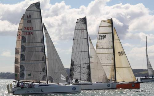 multihull fleet starting