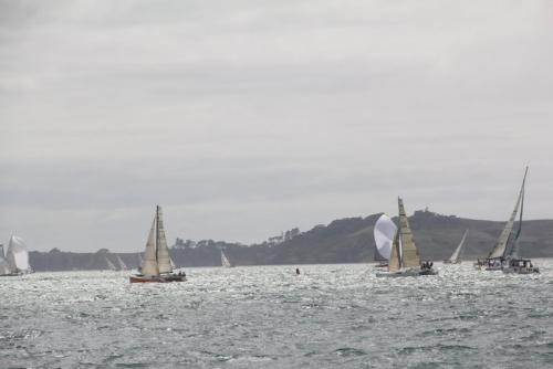 multihulls racing